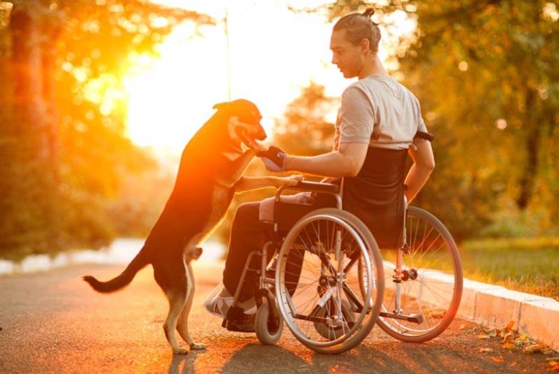 Sedie A Rotelle Pieghevoli Leggere : Le top sedie a rotelle e carrozzine per qualità prezzo