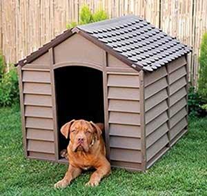 cucce-per-cani-esterno-economica