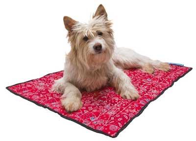 Tappeto Morbido Per Cani : Cucce per cani le top da interno e da esterno classifica