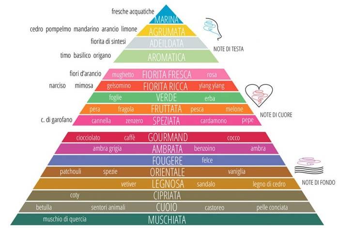 profumo donna piramide-olfattiva